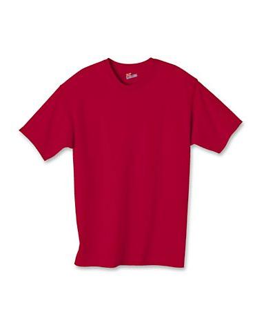 Hanes Shirts
