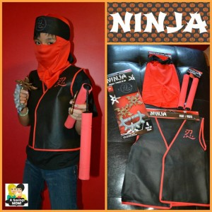 ninja-300x300